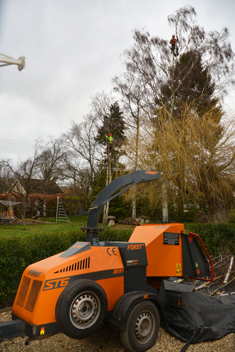 Tree reduction & shaping