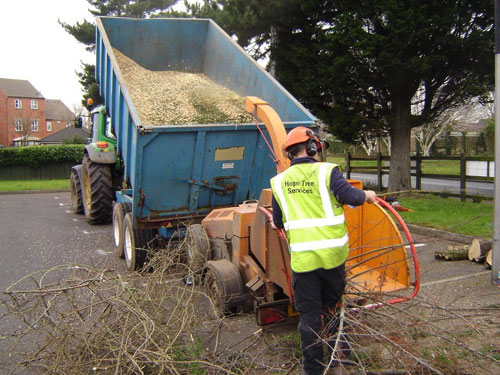 Chipper Service and Woodchip Delivery